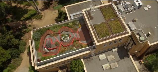 aerial shot of roof.jpg
