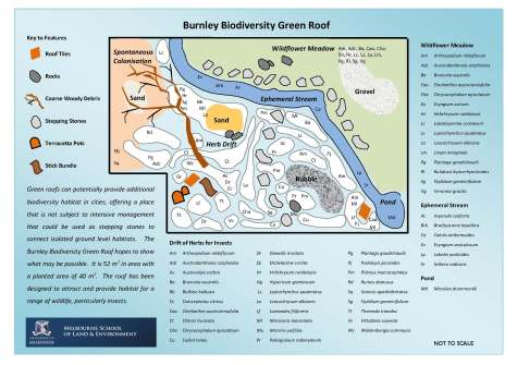 burnley-biodiversity-green-roof-plan_page_1