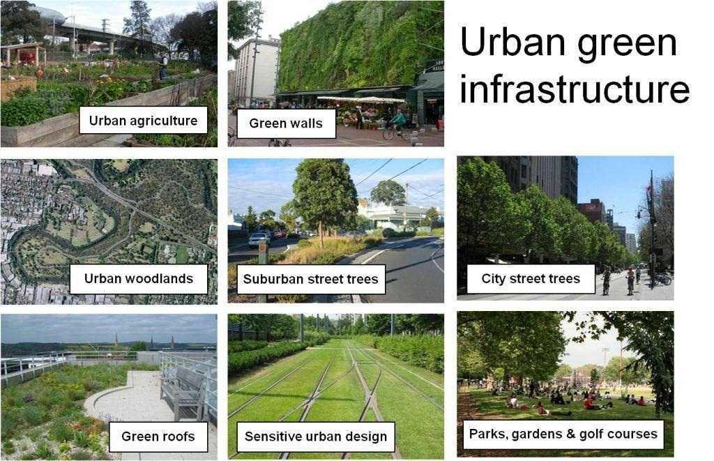 Examples Of Sustainable Cities