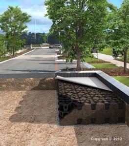 Citygreen_structural soil